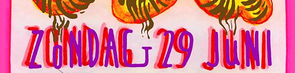 publicaties-banner